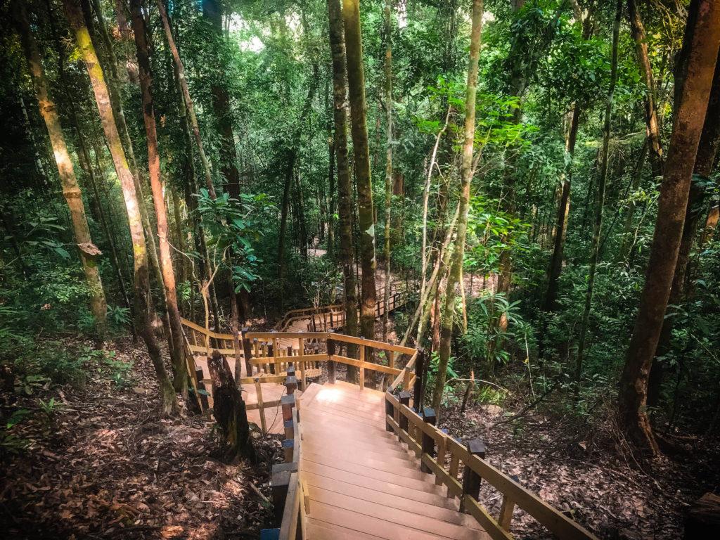 Escaleras Parque Nacional de Ngon Nak