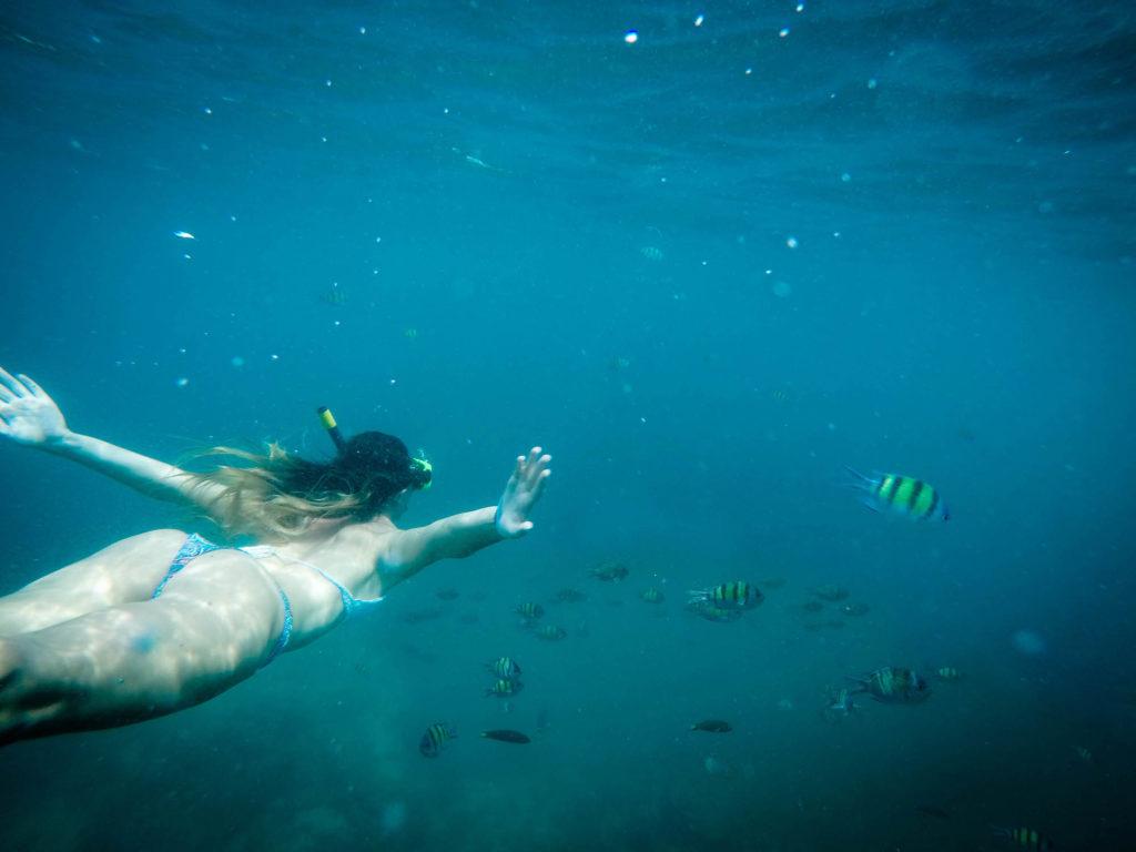 Snorkel en islas Phi Phi